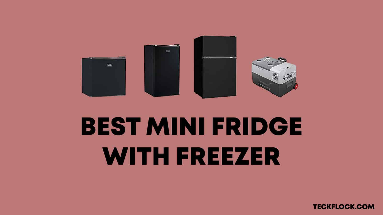 Best Mini Fridge with Freezer